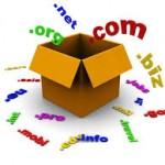 seo-domain-secimi