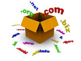 seo domain seçimi