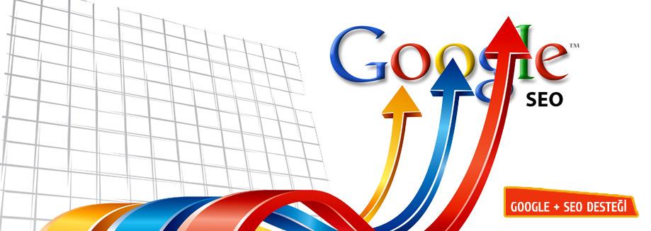 google-seo-danismani