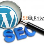 wordpress-seo-eklentileri