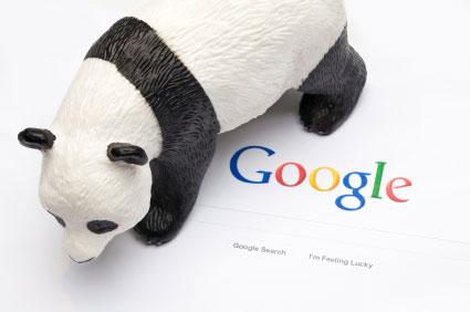 Google Panda 5.0